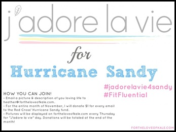 Jadorelavie4Sandy1-1024x770